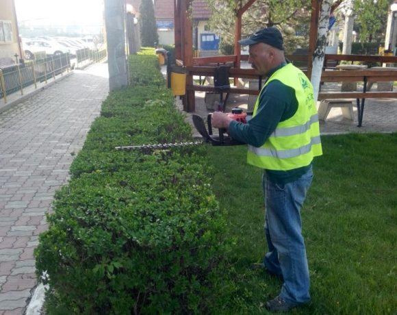 Lucrari intretinere spatiu verde Parc Primaria Voluntari